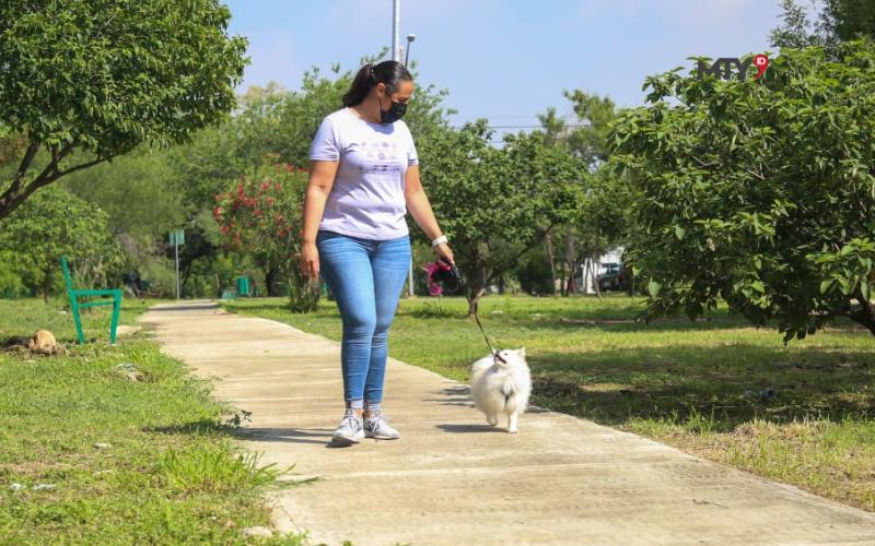 Consultarán Reglamento de Protección Animal en Guadalupe